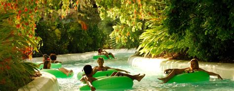 Discover the Best Amusement Parks in Tampa for Families